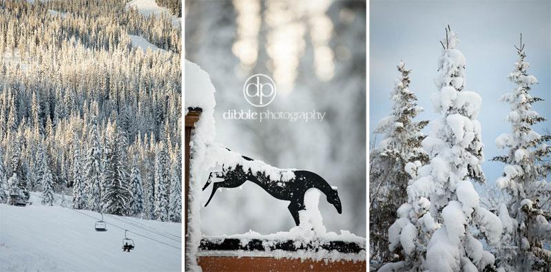 kicking-horse-winter-elopement-wm01.jpg