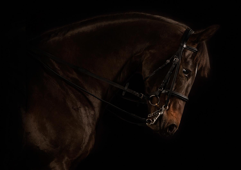 Iron Duke Partners Photography by Scenario Communications Ltd.jpg