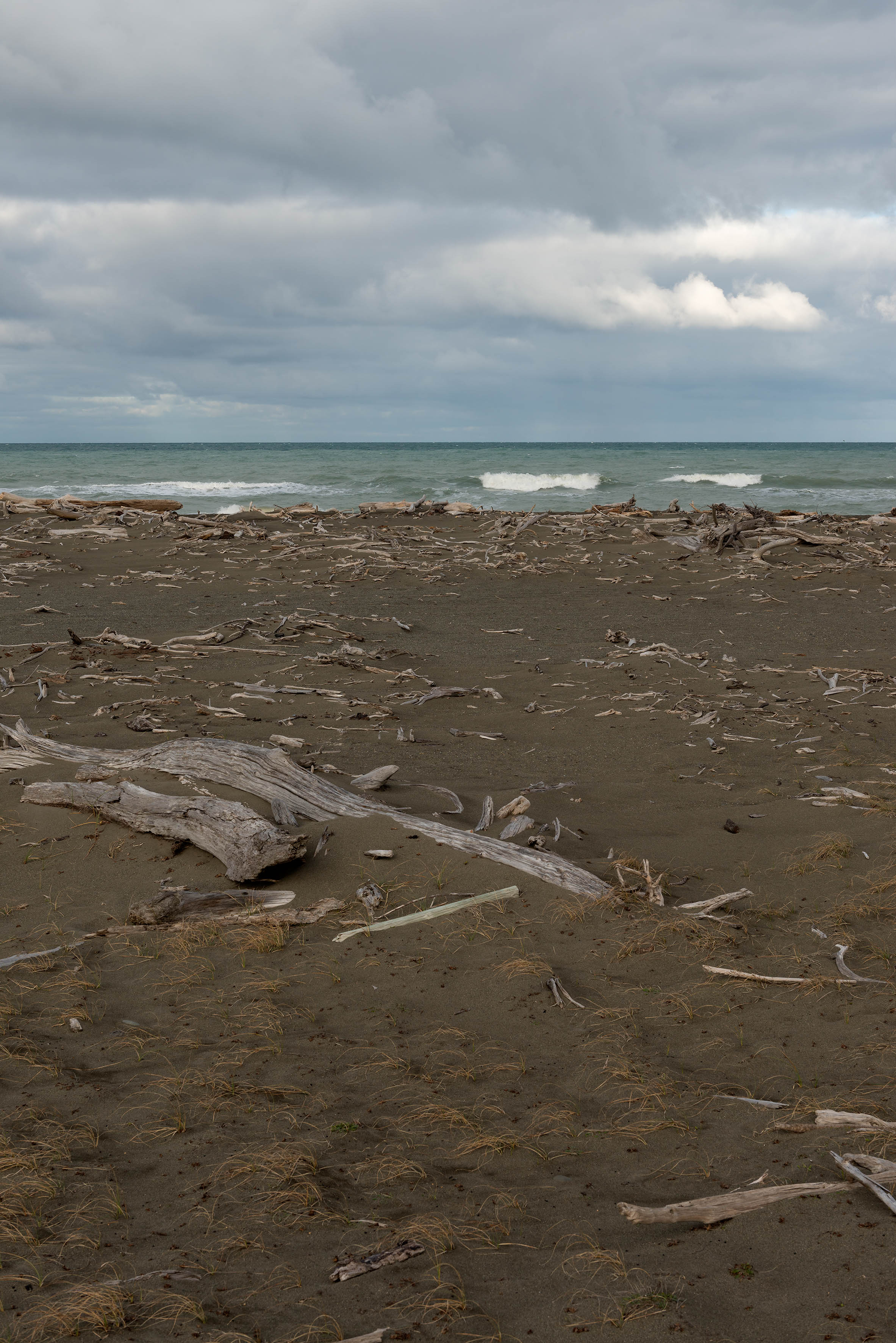 Natalie Robertson, He Wai Mou! He Wai Mau!, Takutai Moana — Rangitukia Hikoi 0–20 (2016–'17)   Nikon D800E, Nikon 24.0–70.0 mm f/2.8 lens, 50mm, 1/160s, f11, ISO 200
