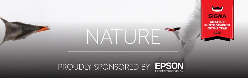 Nature-790x250.jpg