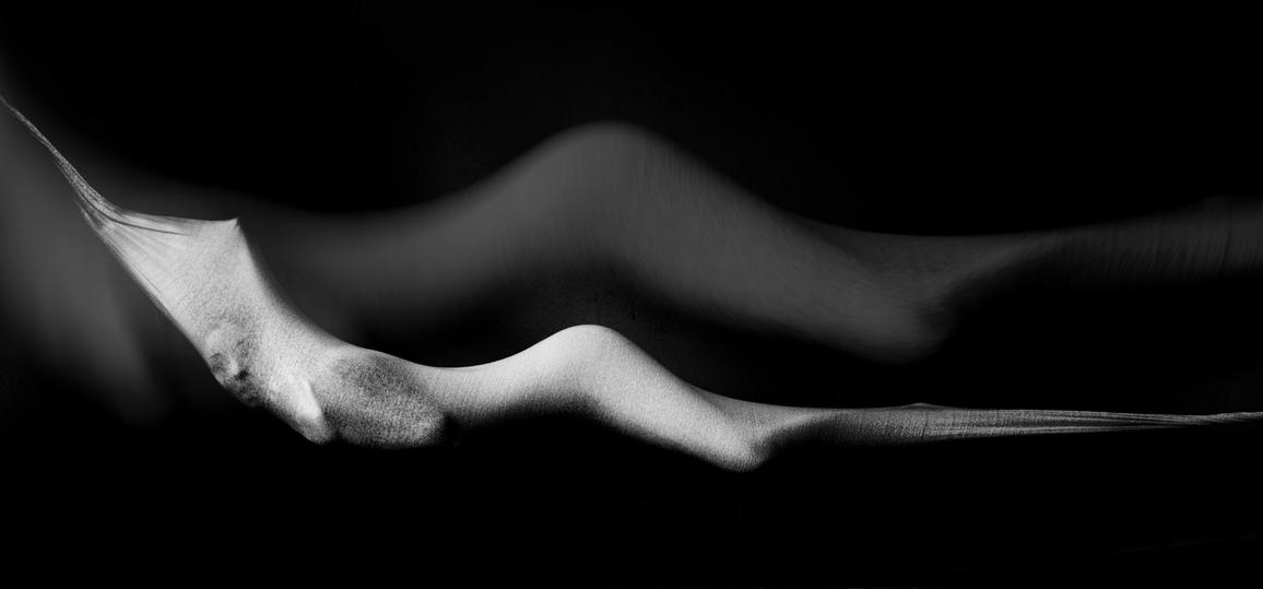 Second: Shelley Harvey, Womb