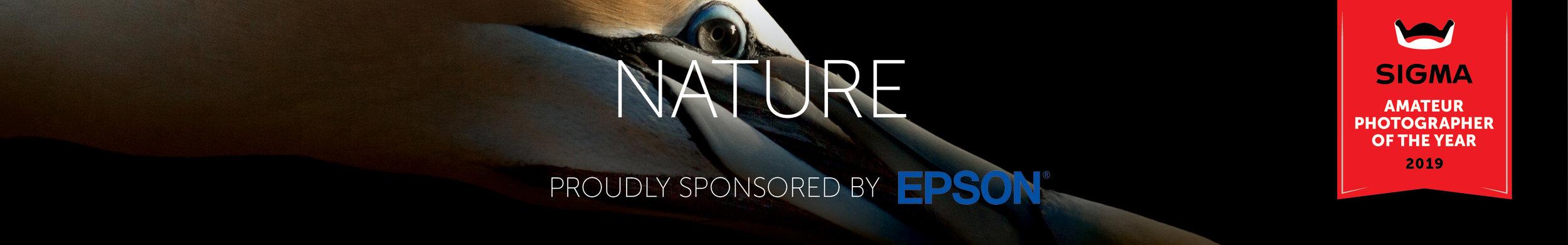 Nature 320x50px.jpg