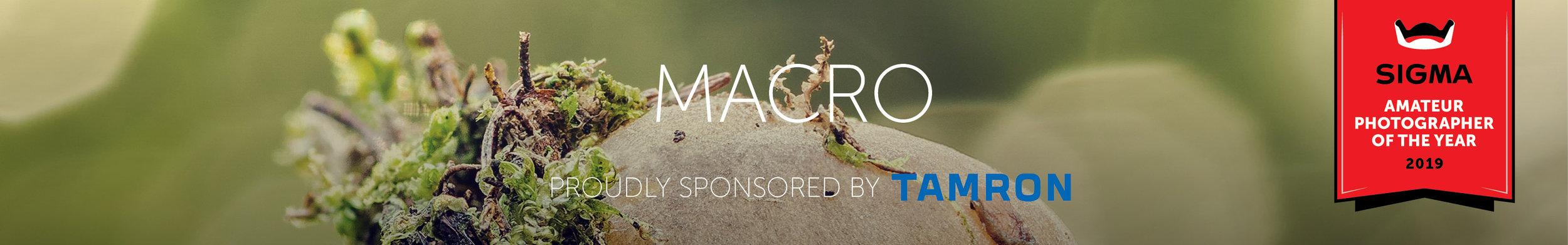 Macro 320x50px.jpg