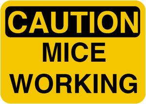 miceatwork01.jpg