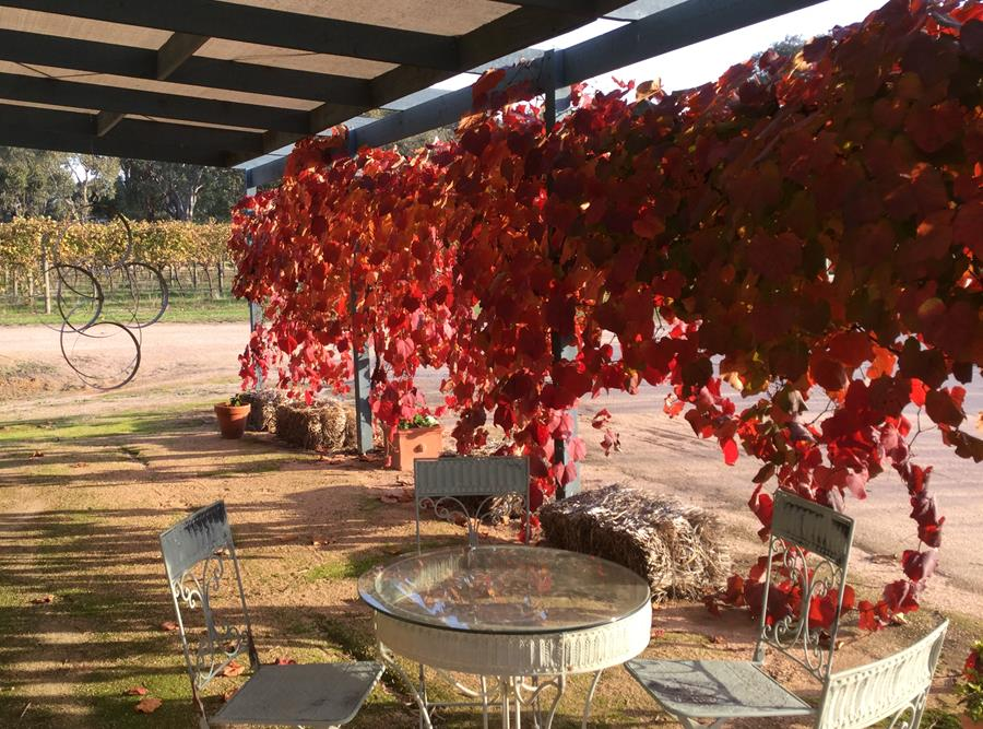 Winter News  Rosé Bottling Welcome Laura Blackie  Link to our latest newsletter…