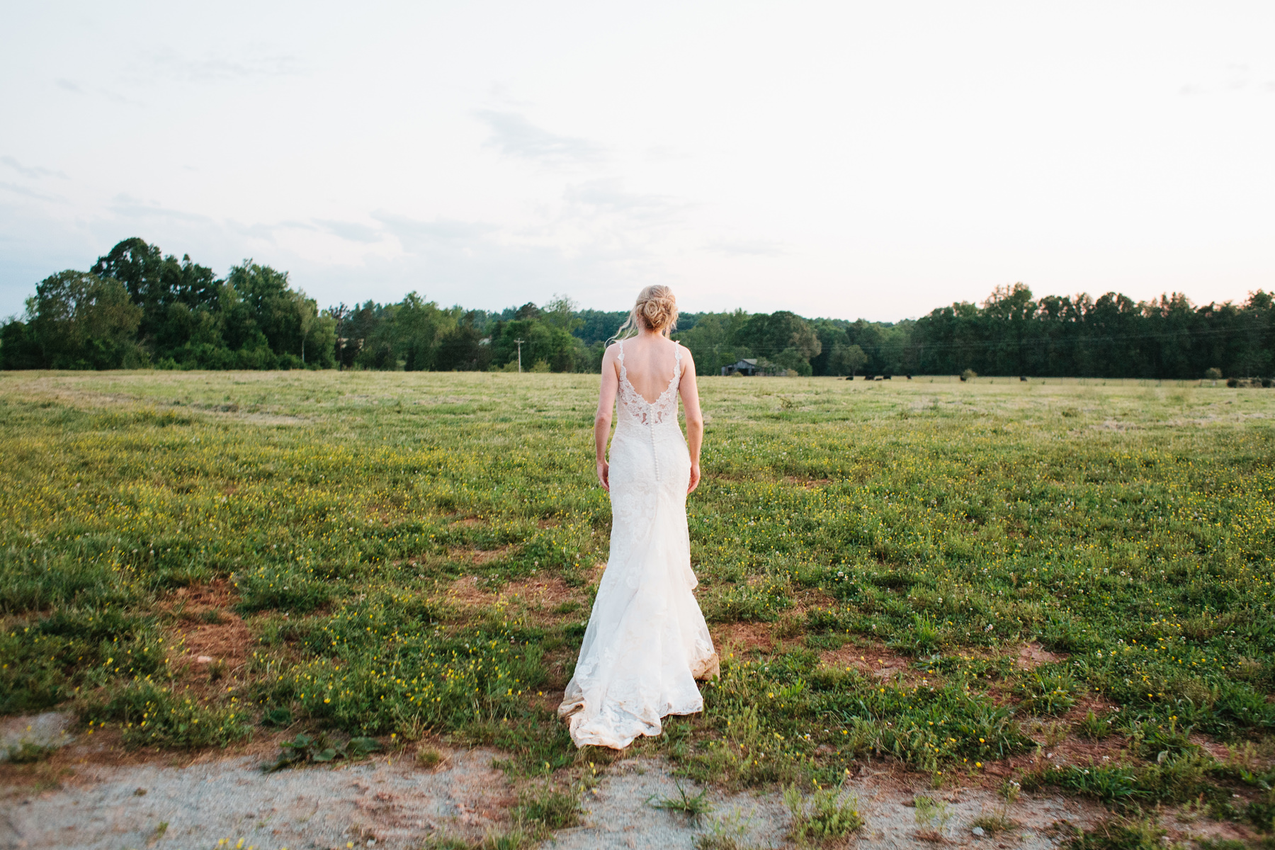 Bride Walking in a Field at Sunset