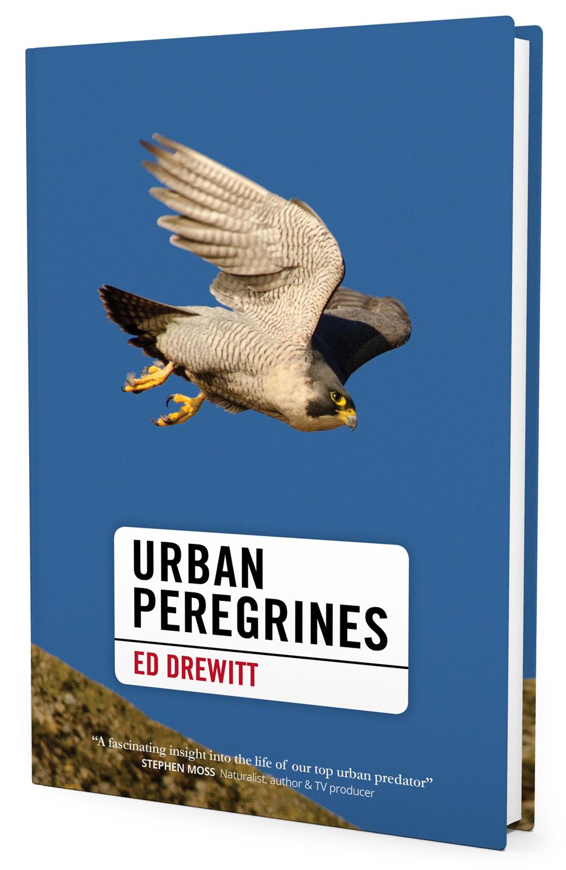 Ed_Drewitt_Urban_Peregrines_Book_1.jpg