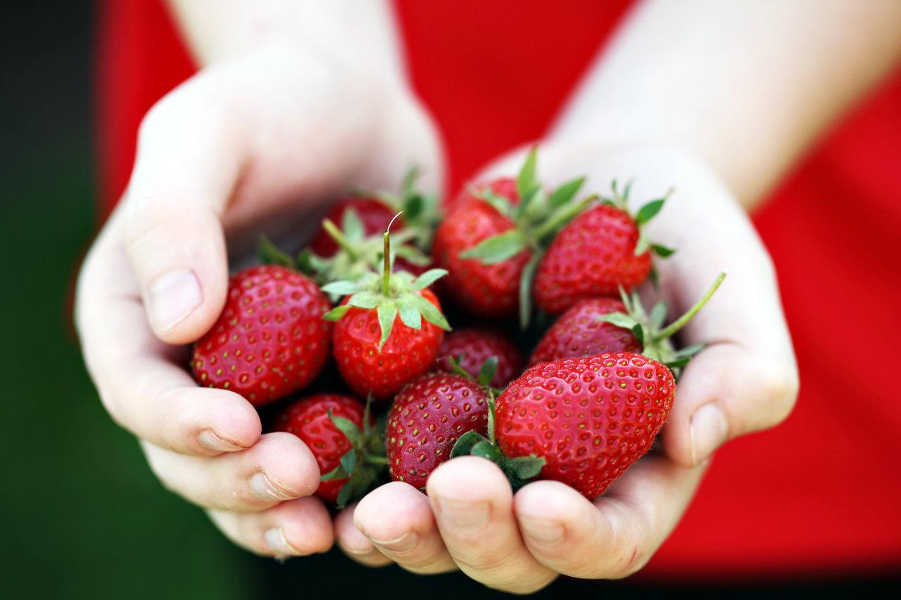fresh_fruit_by_schatzfoto-d52bskf.jpg