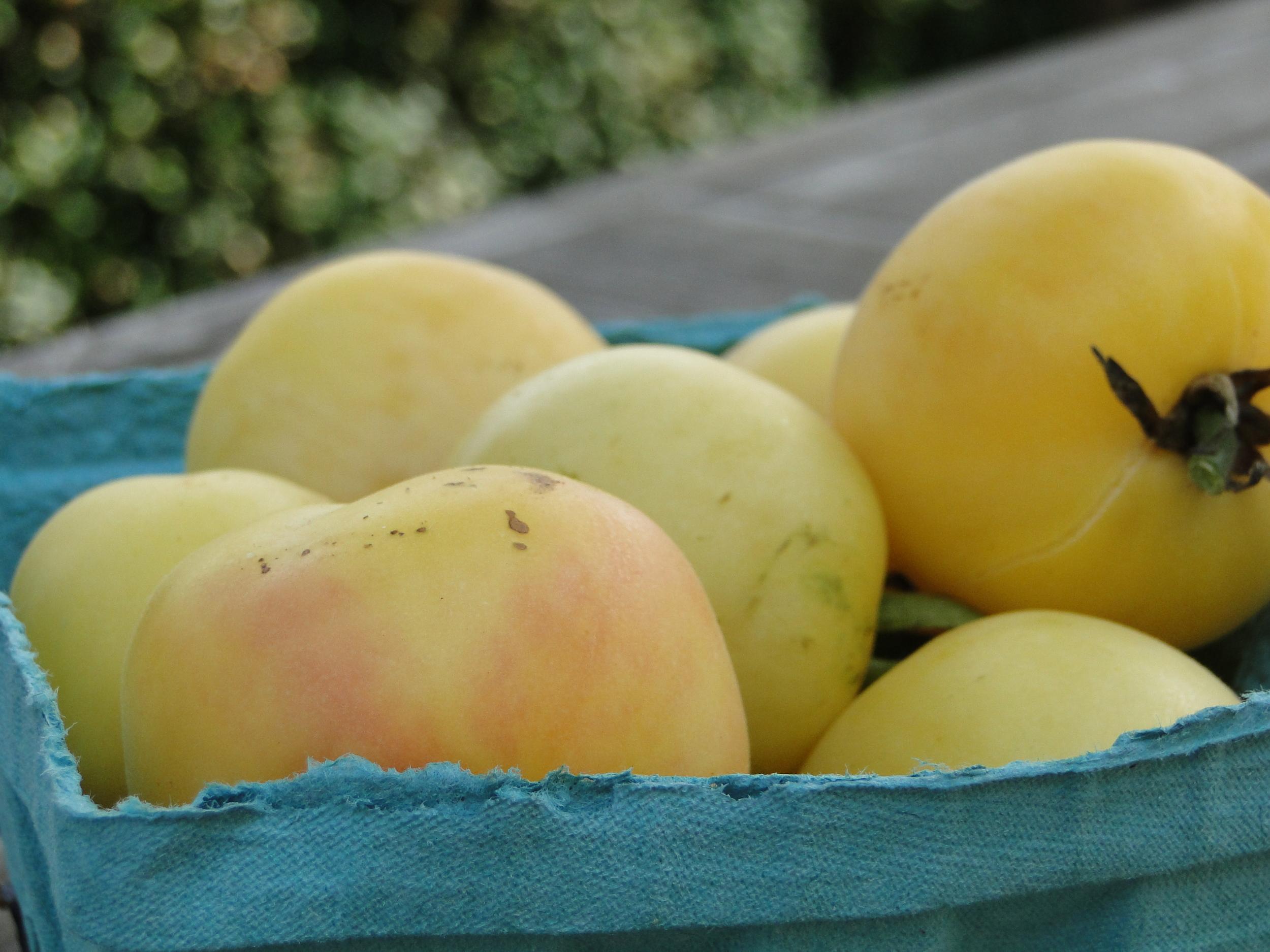 Tomato Georgia Peach