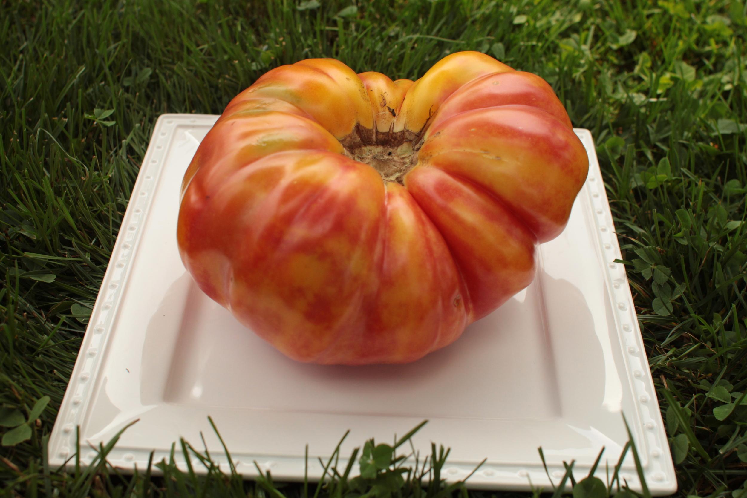Tomato Pineapple