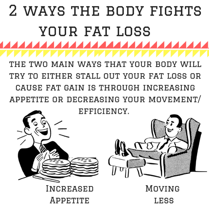 2 ways the body fights your fat loss (1).png