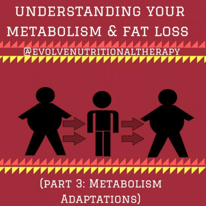 understanding your metabolism & fat loss (PART 3) (1).png