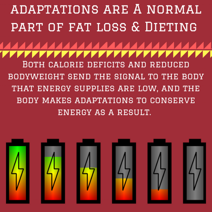 adaptations are A normal part of fat loss & Dieting.png