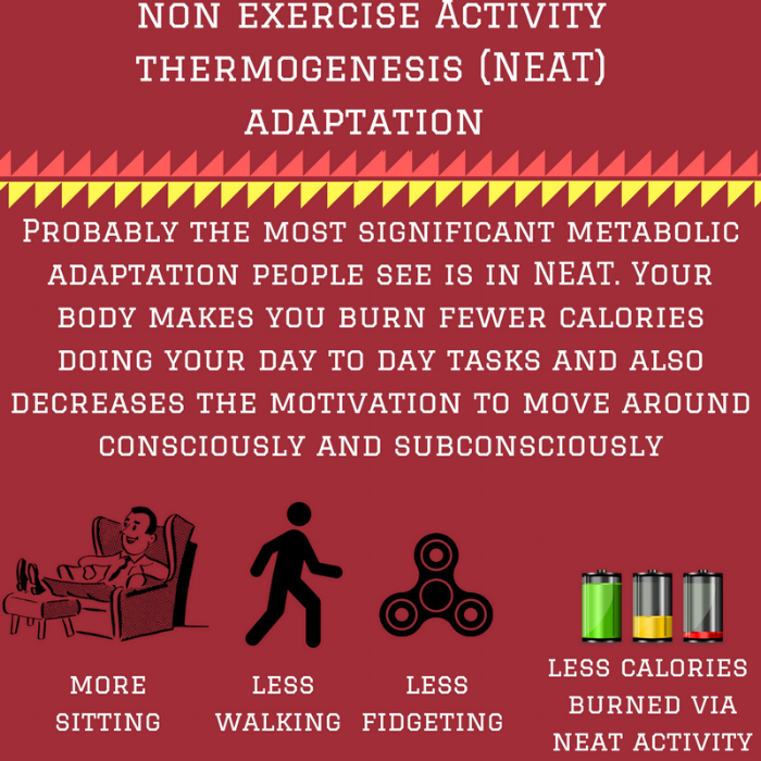 non exercise Activity thermogenesis (NEAT) adaptation.png