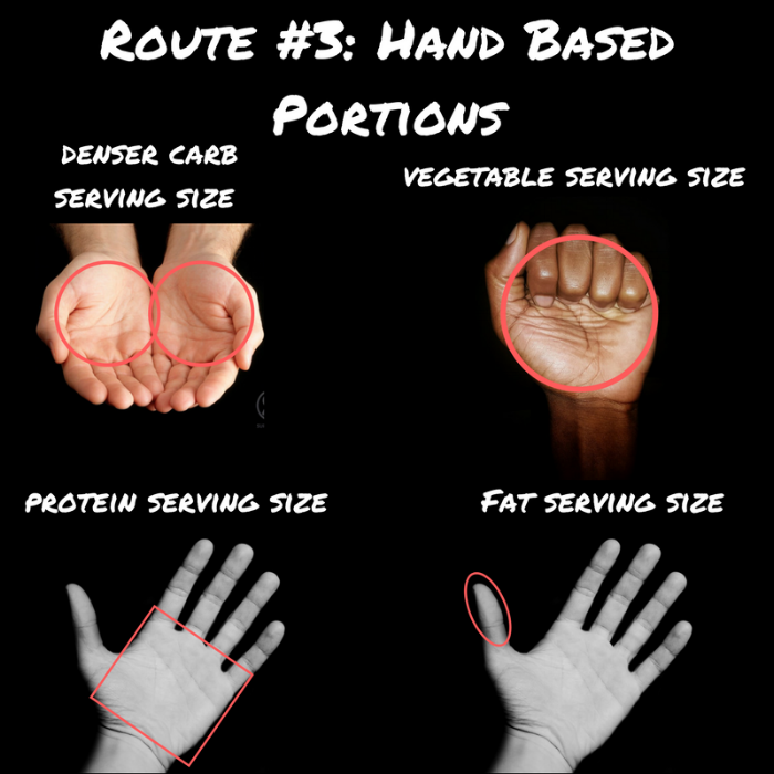 Hand Based Portions (1).png