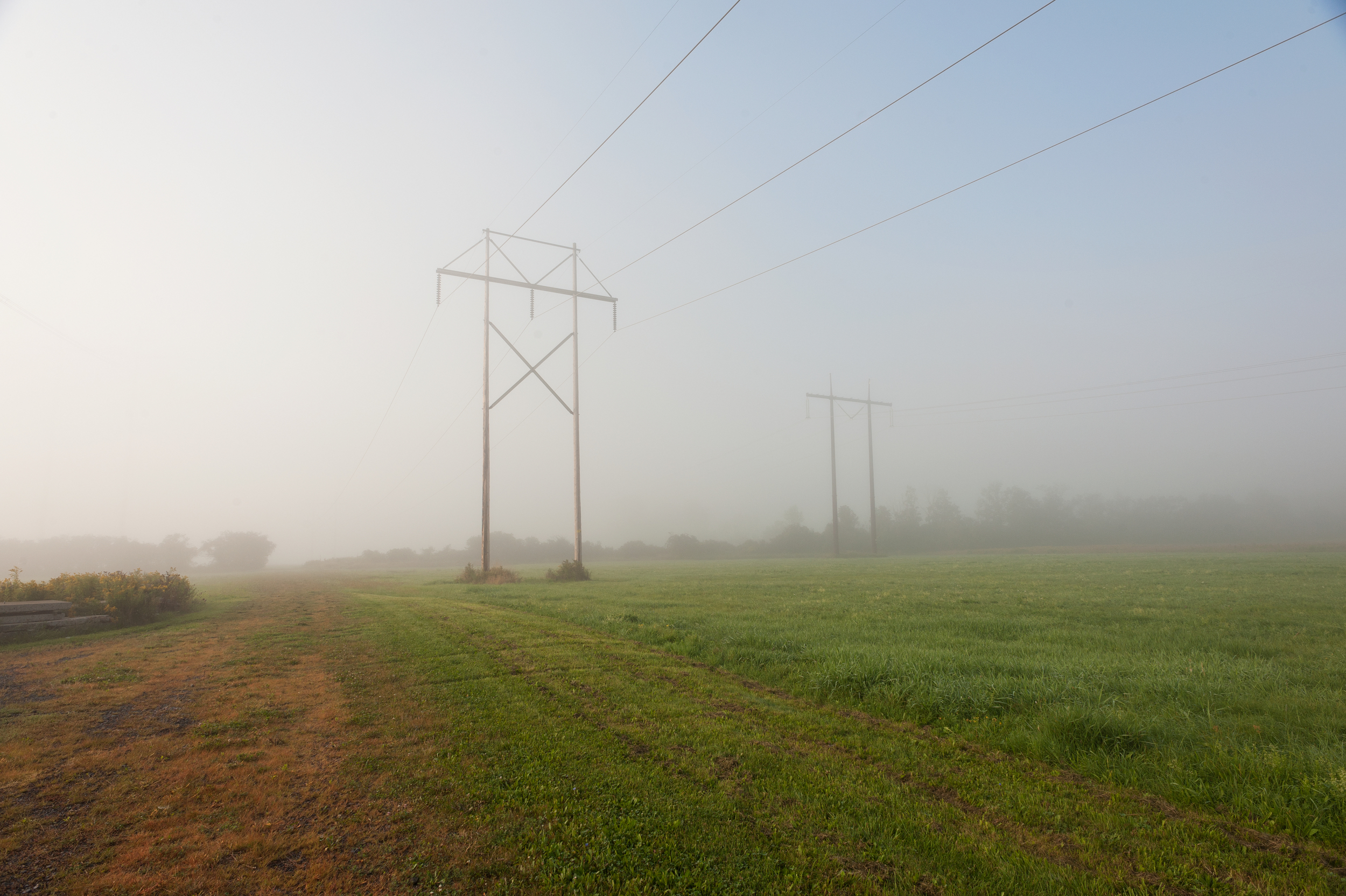 Electrical Fog.jpg