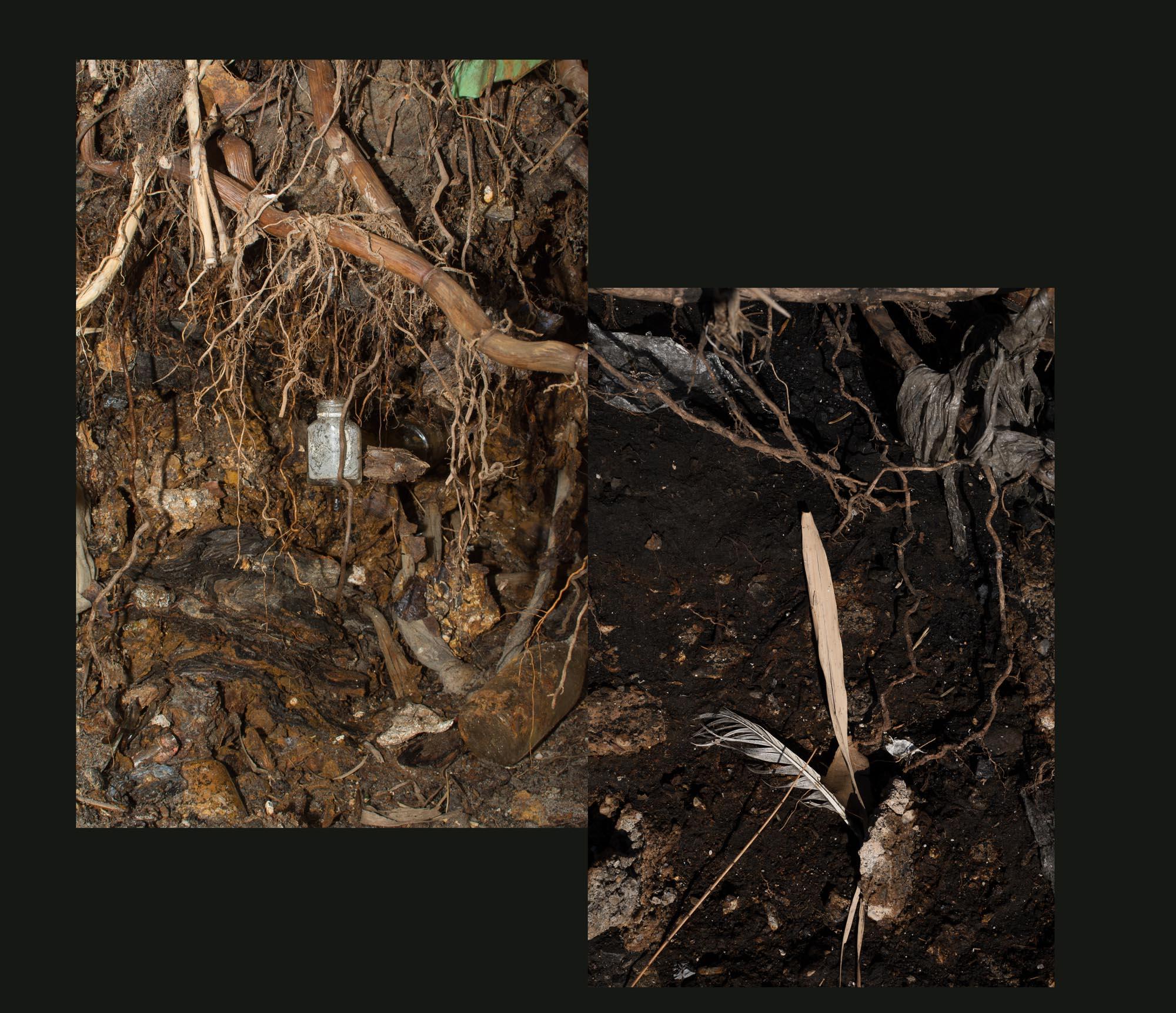 Buried Garden-5.jpg