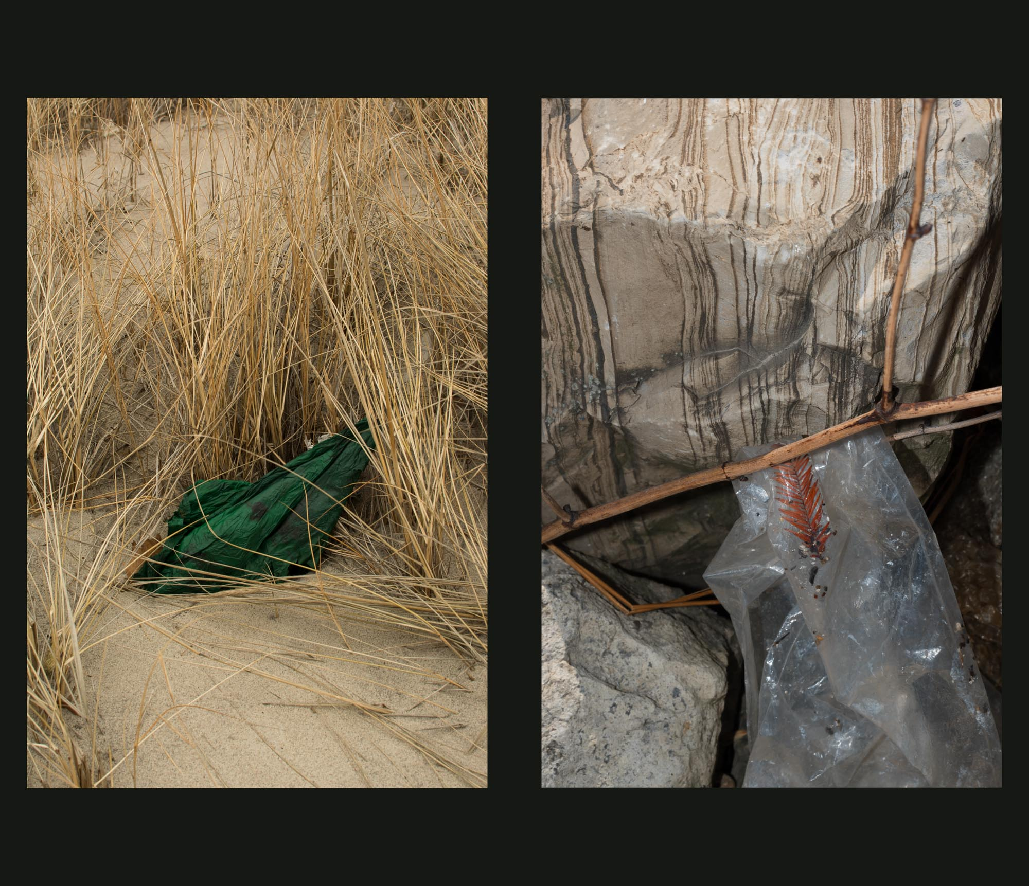 Buried Garden-7.jpg