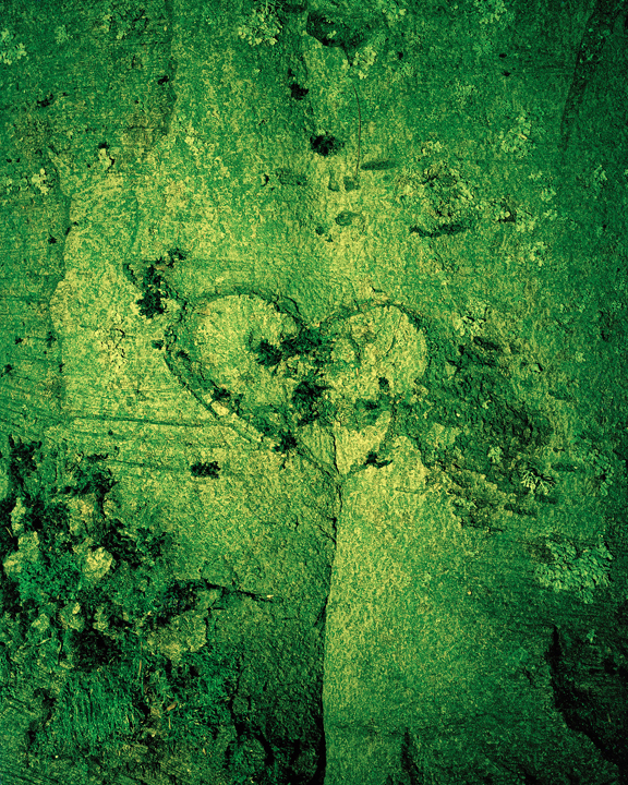 GreenValentine.jpg
