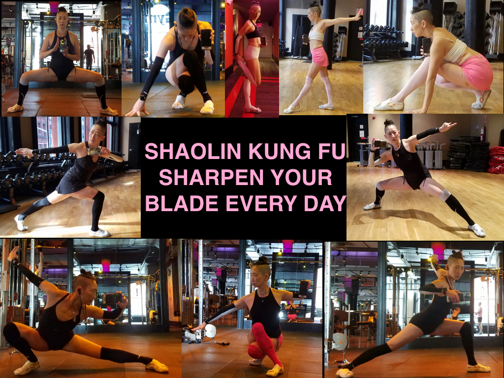 Clockwise from the top left: ma bu/horse stance; crouching tiger, hidden dragon; quad stretch; getting ready to kick; getting ready to pounce; tan lung quan/mantis style; gong bu/bow stance/ xie bu/resting stance; pu bu/flat stance; ca bu/crossed stance