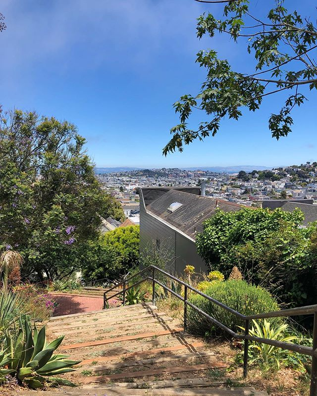 Best most favorites little spot in SF to grab some sun when it's foggy on my side of the hill.  #istillmakebags #justdontpostpicsofthem #thegoodwest