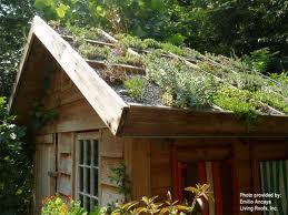 cottage green roof.jpg