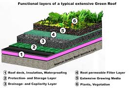 Diy Green Roof Fairbanks Green Infrastructure Group
