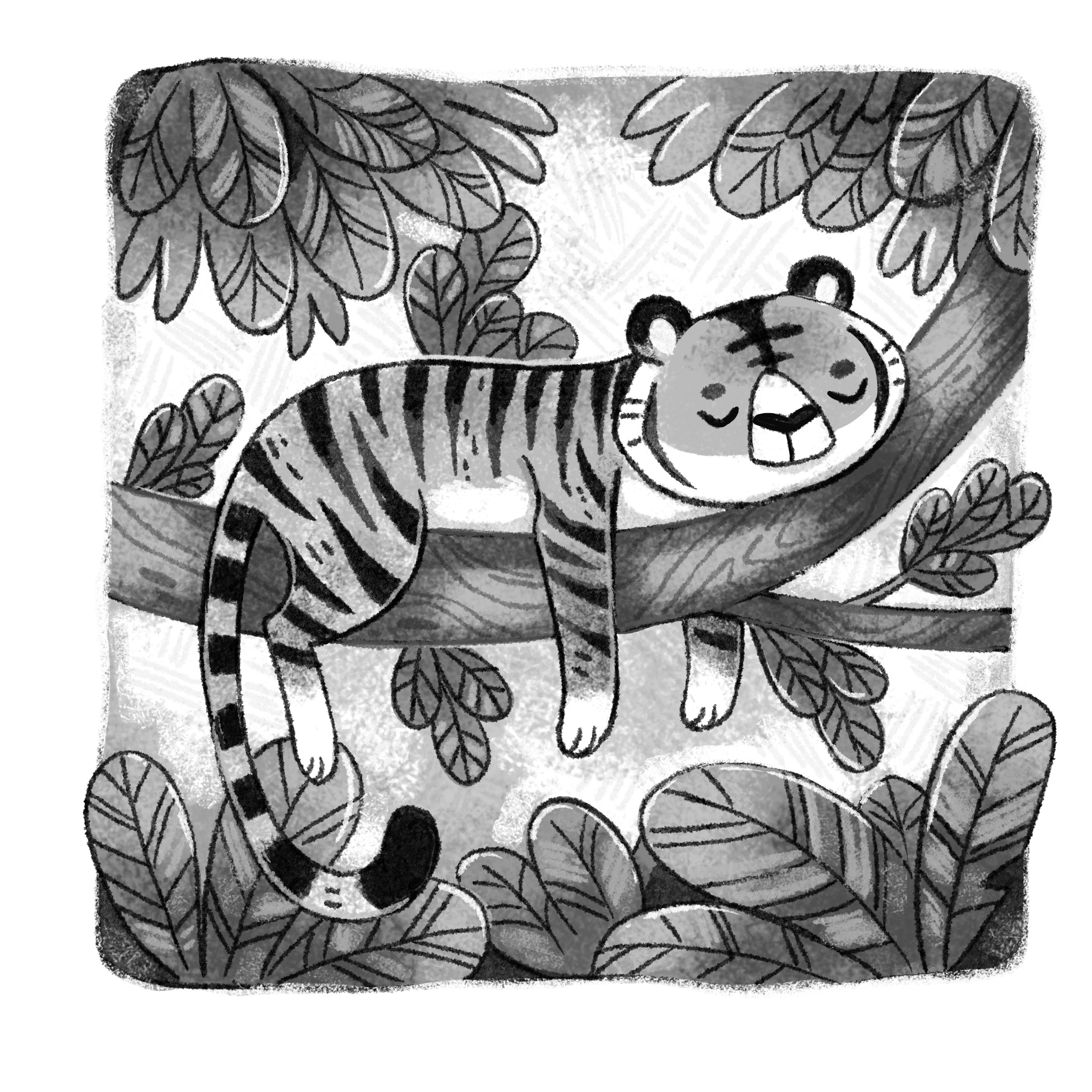 Tiger_BlackandWhitePostcard copy.jpg