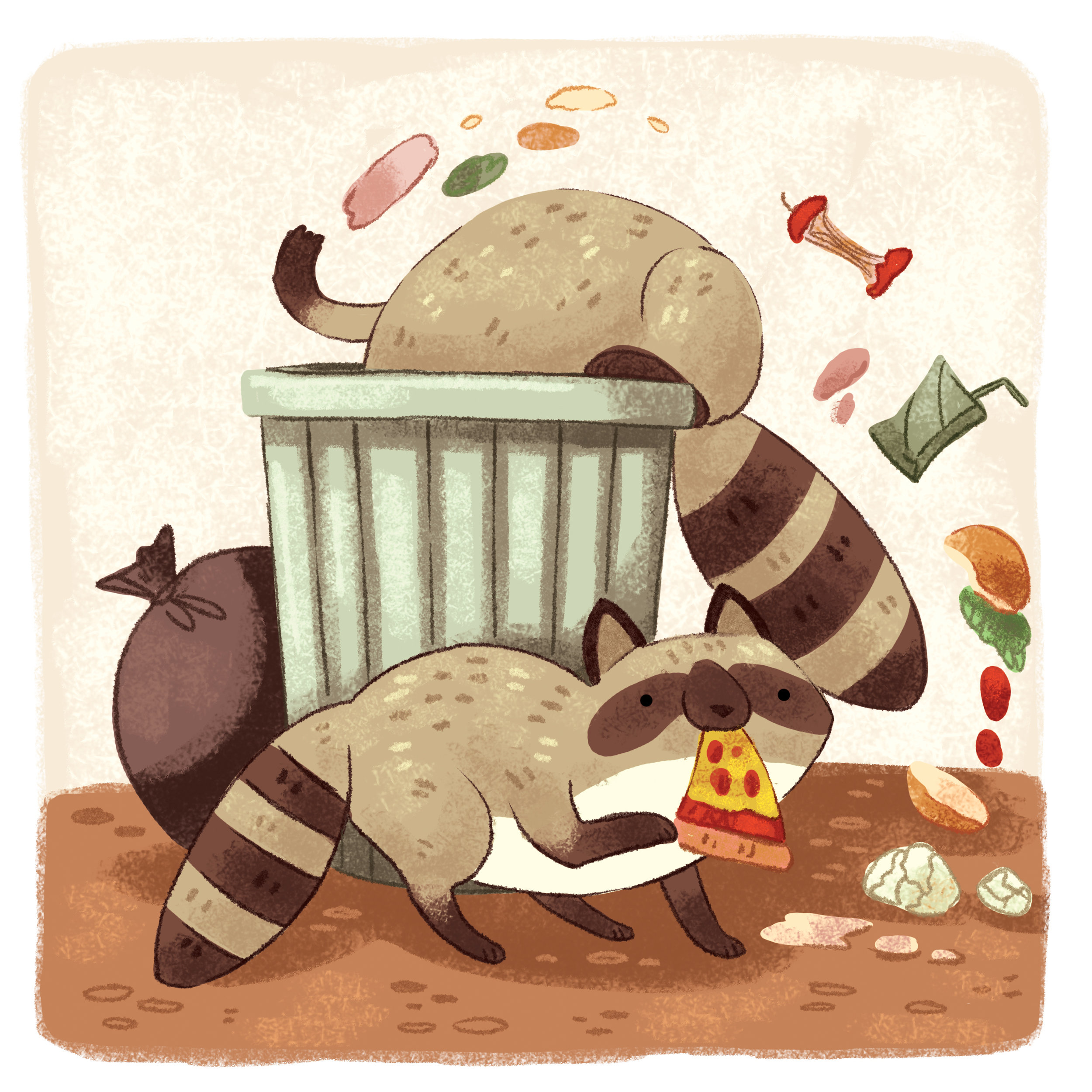 funny_raccoon_garbage_animals_cute.jpg