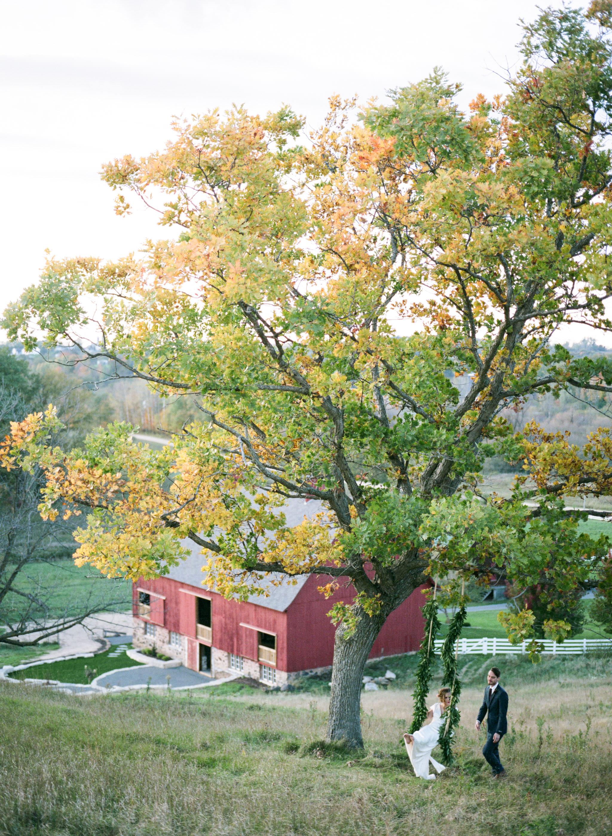 Birchill Barn Fall shoot 132.jpg