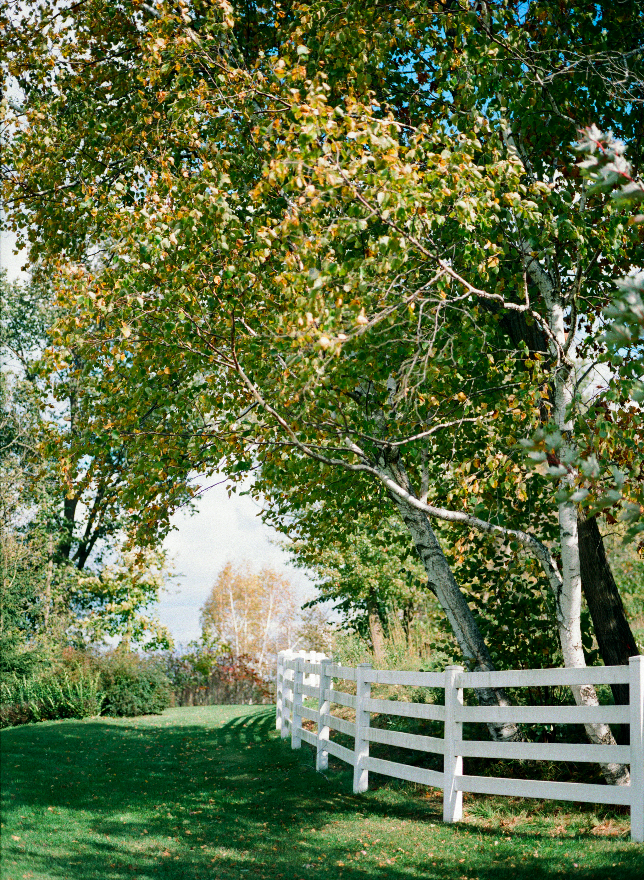 Birchill Barn Fall shoot 142.jpg