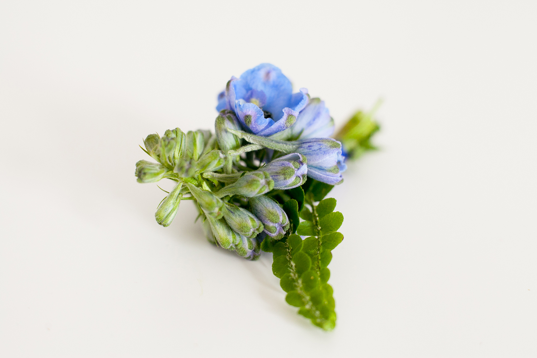 lilac16.jpg