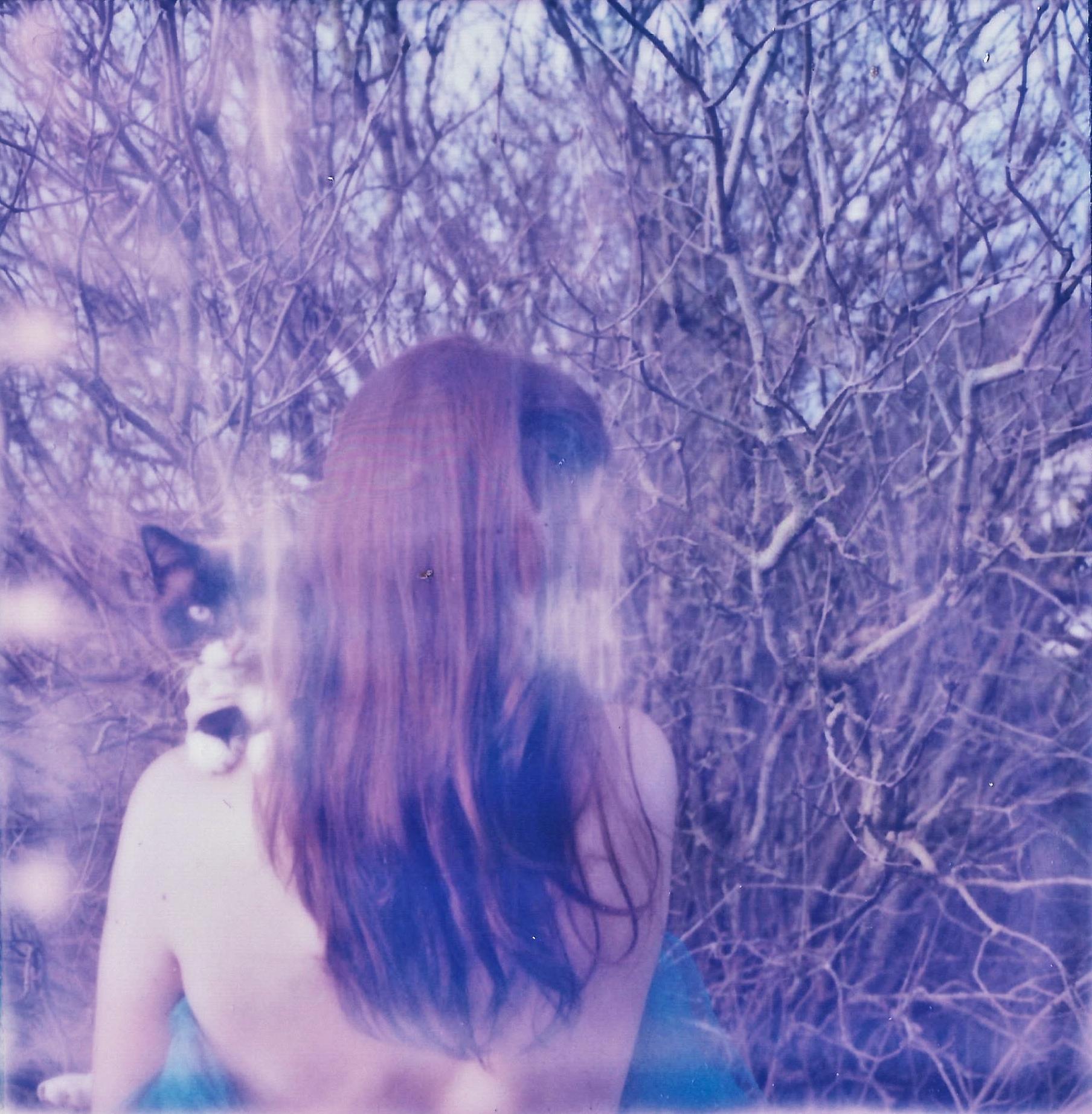Dans les branches de l'hiver.jpg