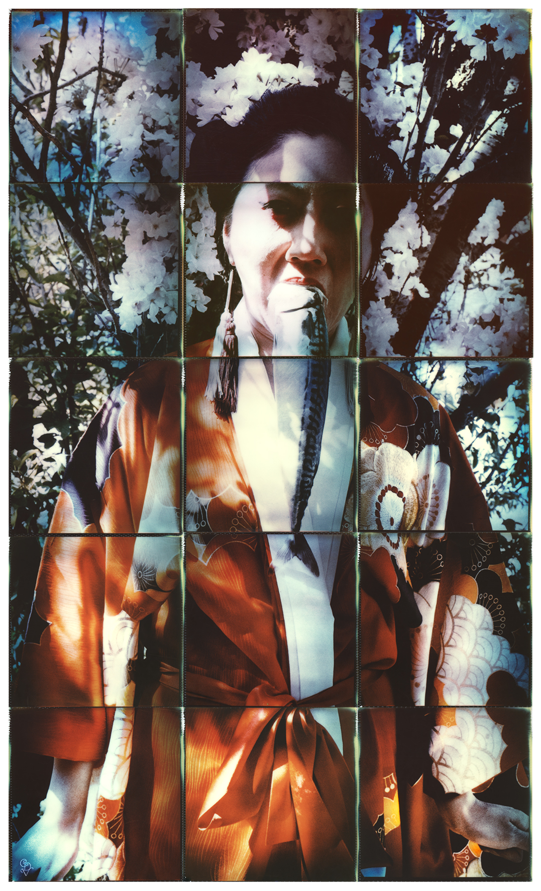 """Ming Dynasty"" by Carmen De Vos 