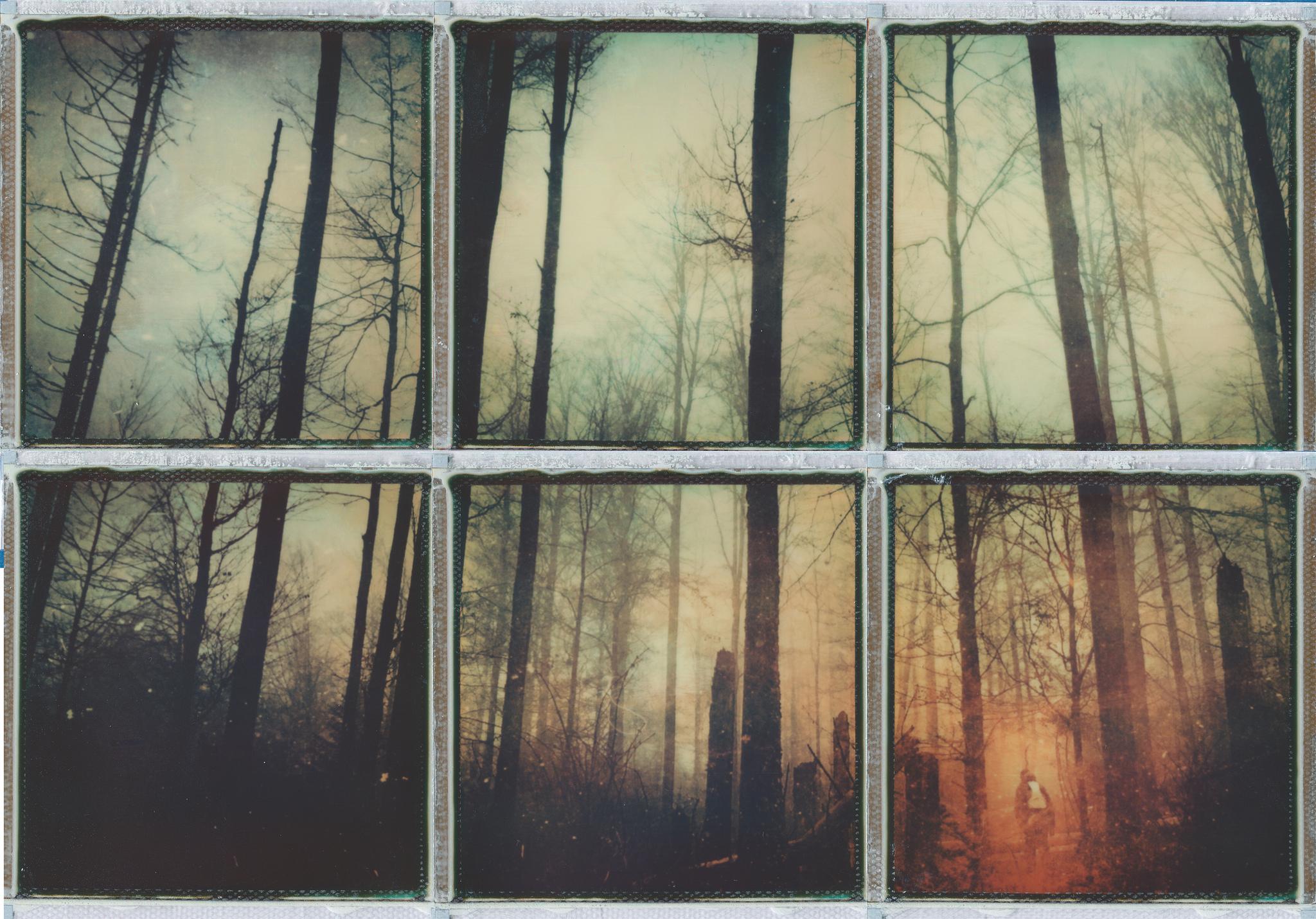 """""""Hidden..."""" by Ina Echternach"""