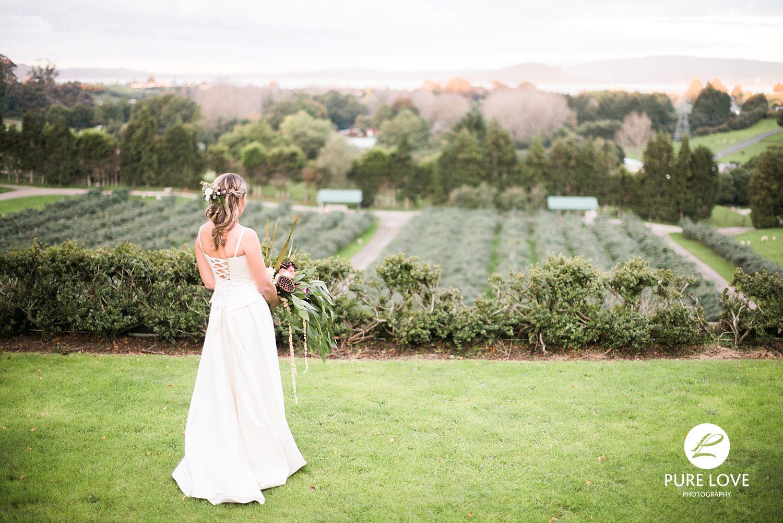 magnificent view wedding