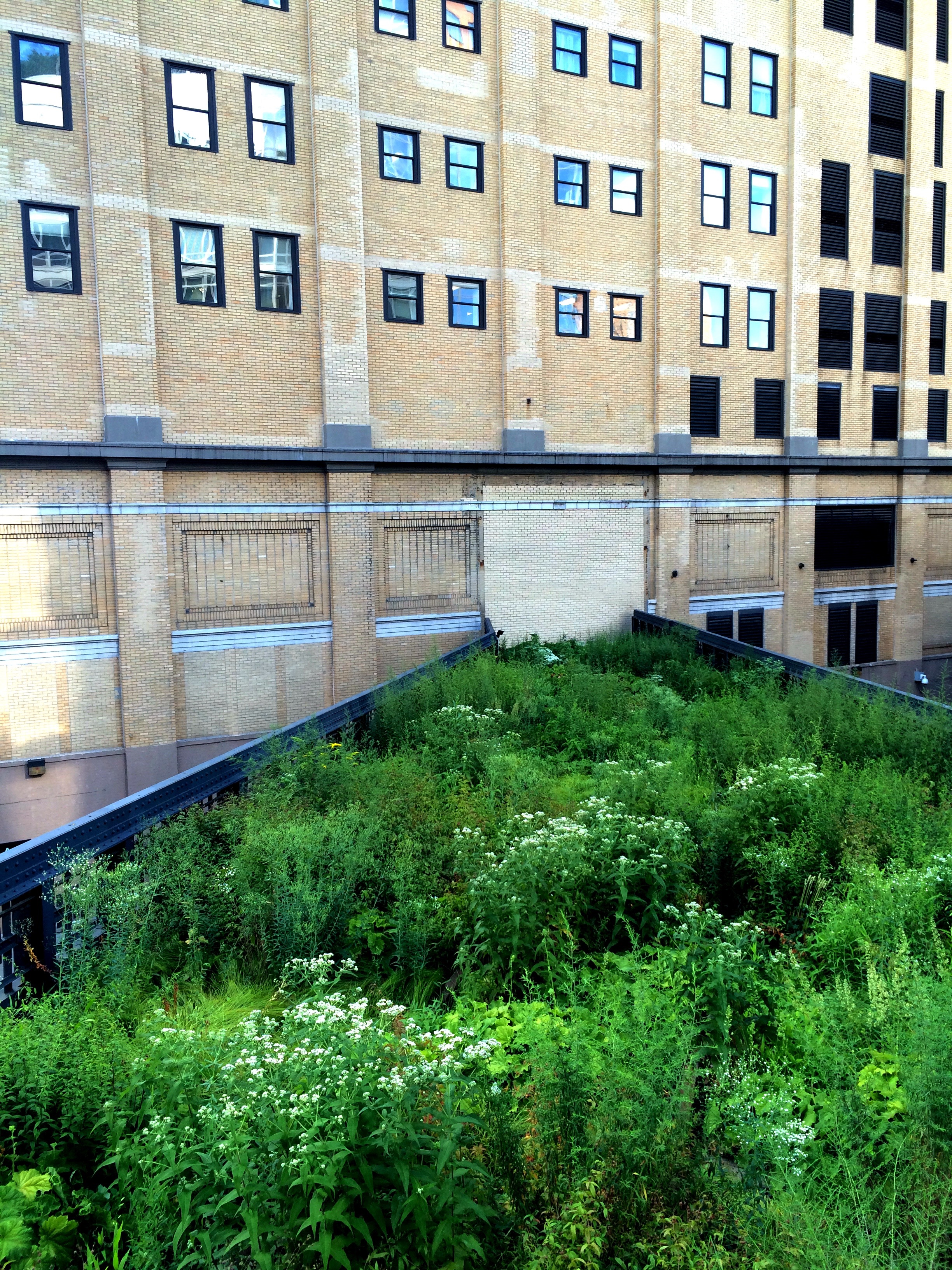 The Highline. Free in NYC