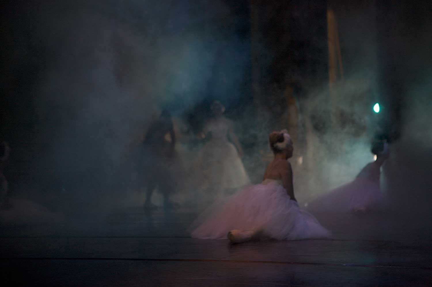 Beautiful pictures of these Cape Town ballet dancers.
