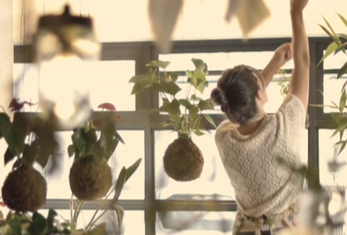 I really like this idea of Hanging Plants - video!