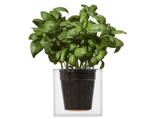 I think this flower pot from Boskke is very cool .