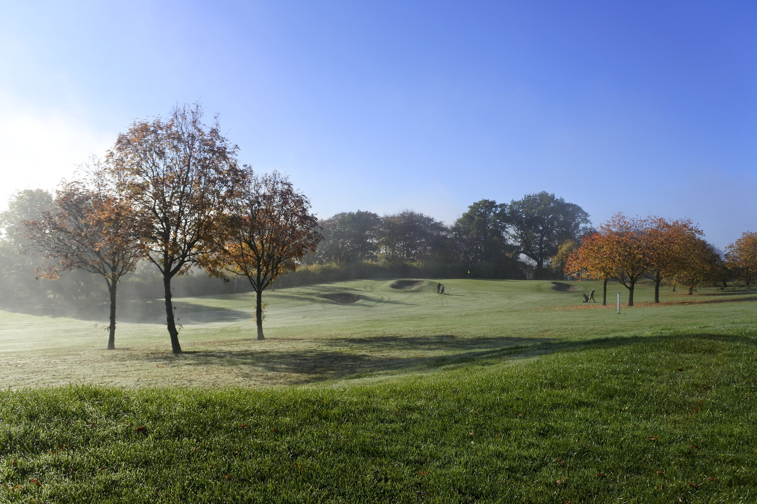 1st Fairway Mist.JPG