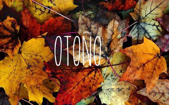 rincones_otoño-escandinavo-09.jpg