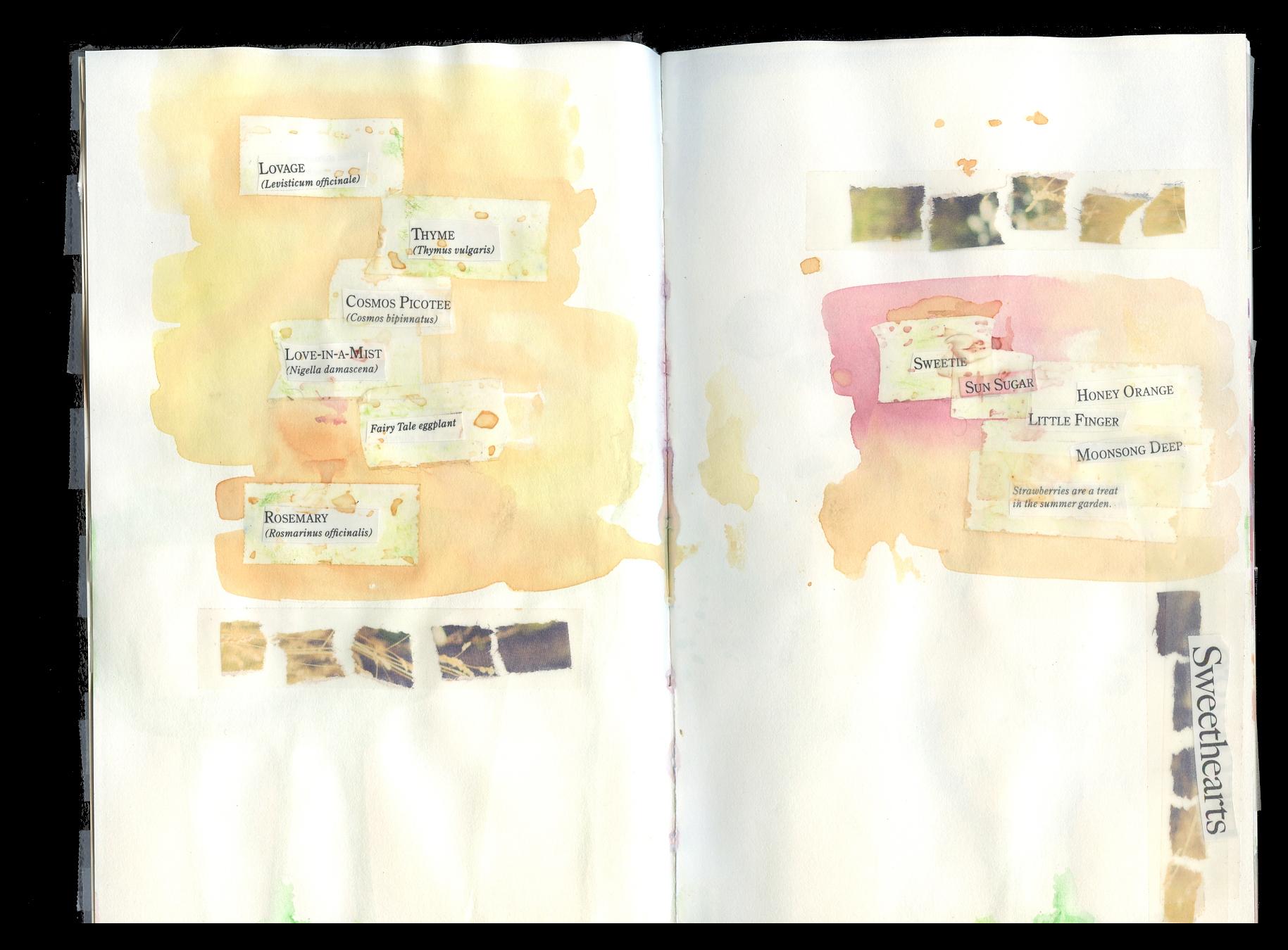 journal2014033.jpg