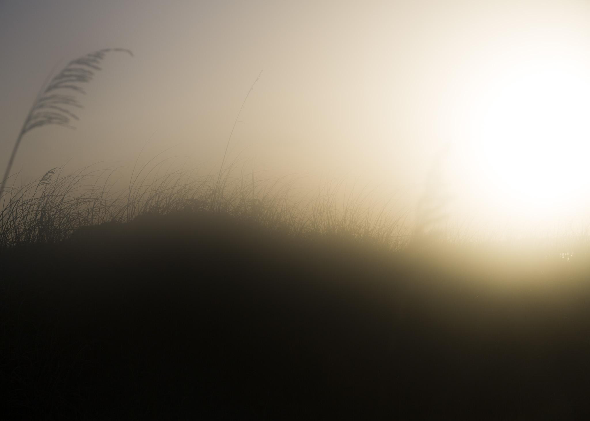 sunsetmia_0004.jpg
