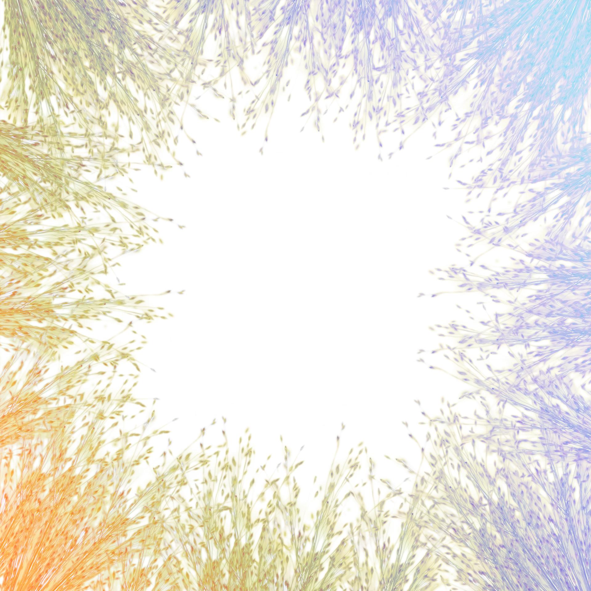 botanical_0020.jpg