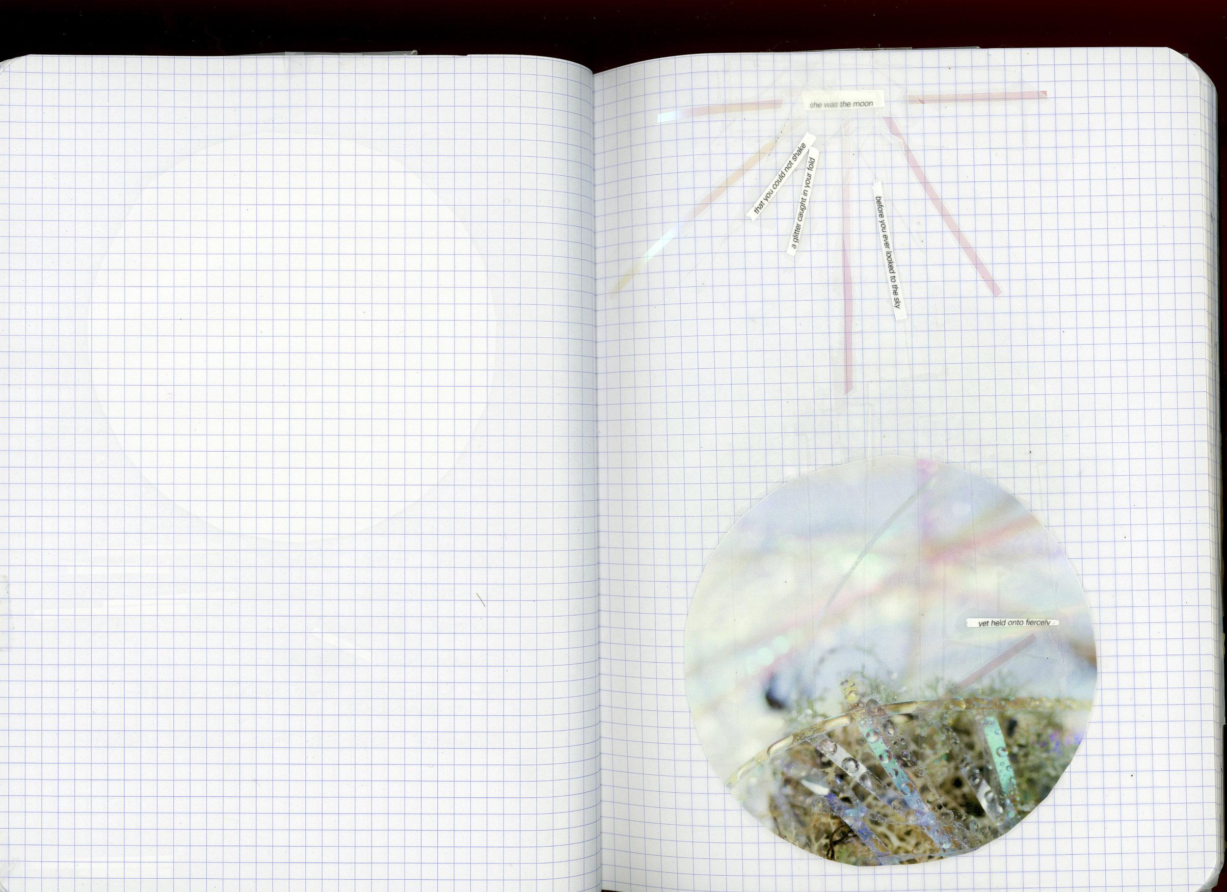 botts-journals003.jpg