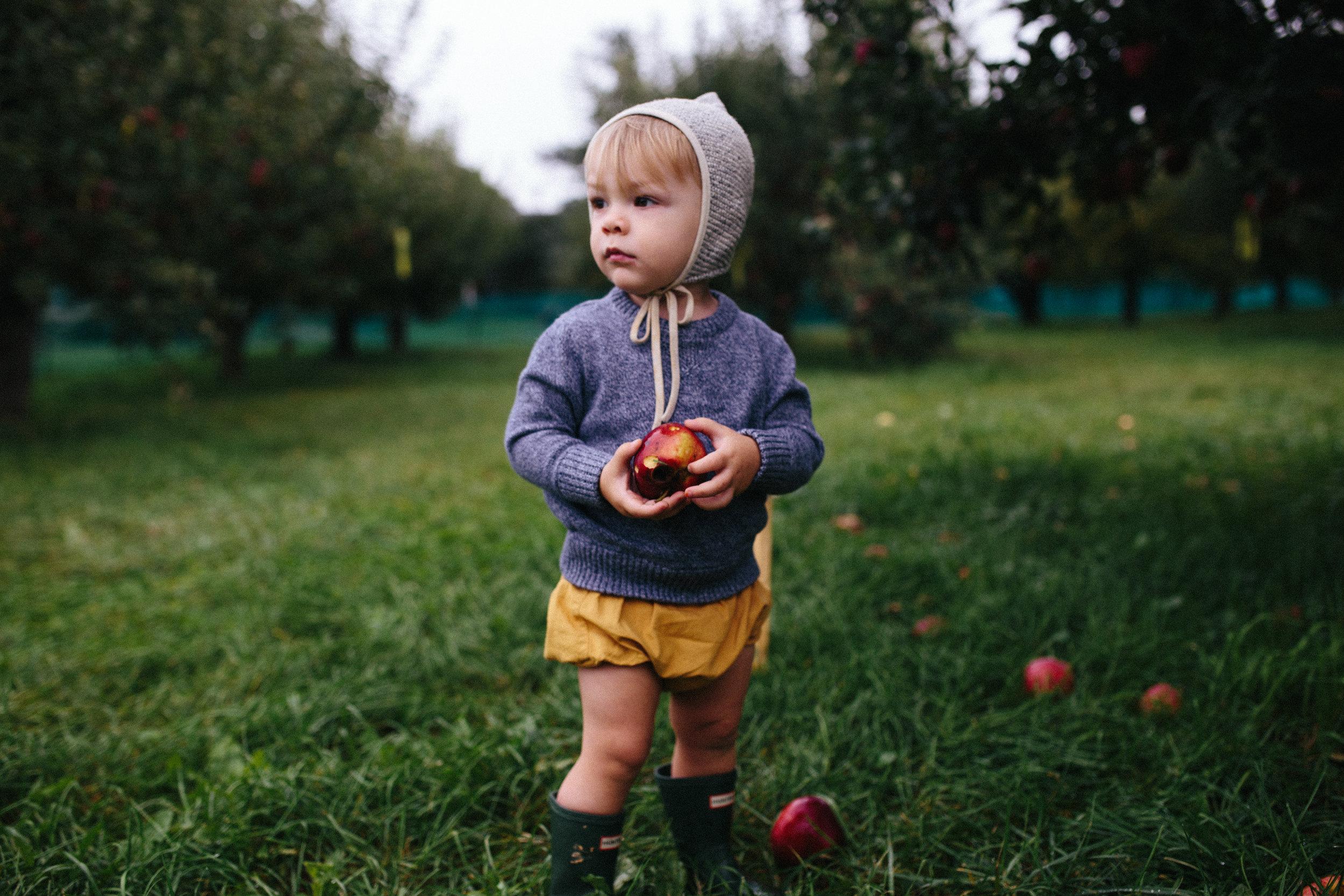 Apple Picking 16'-11.jpg