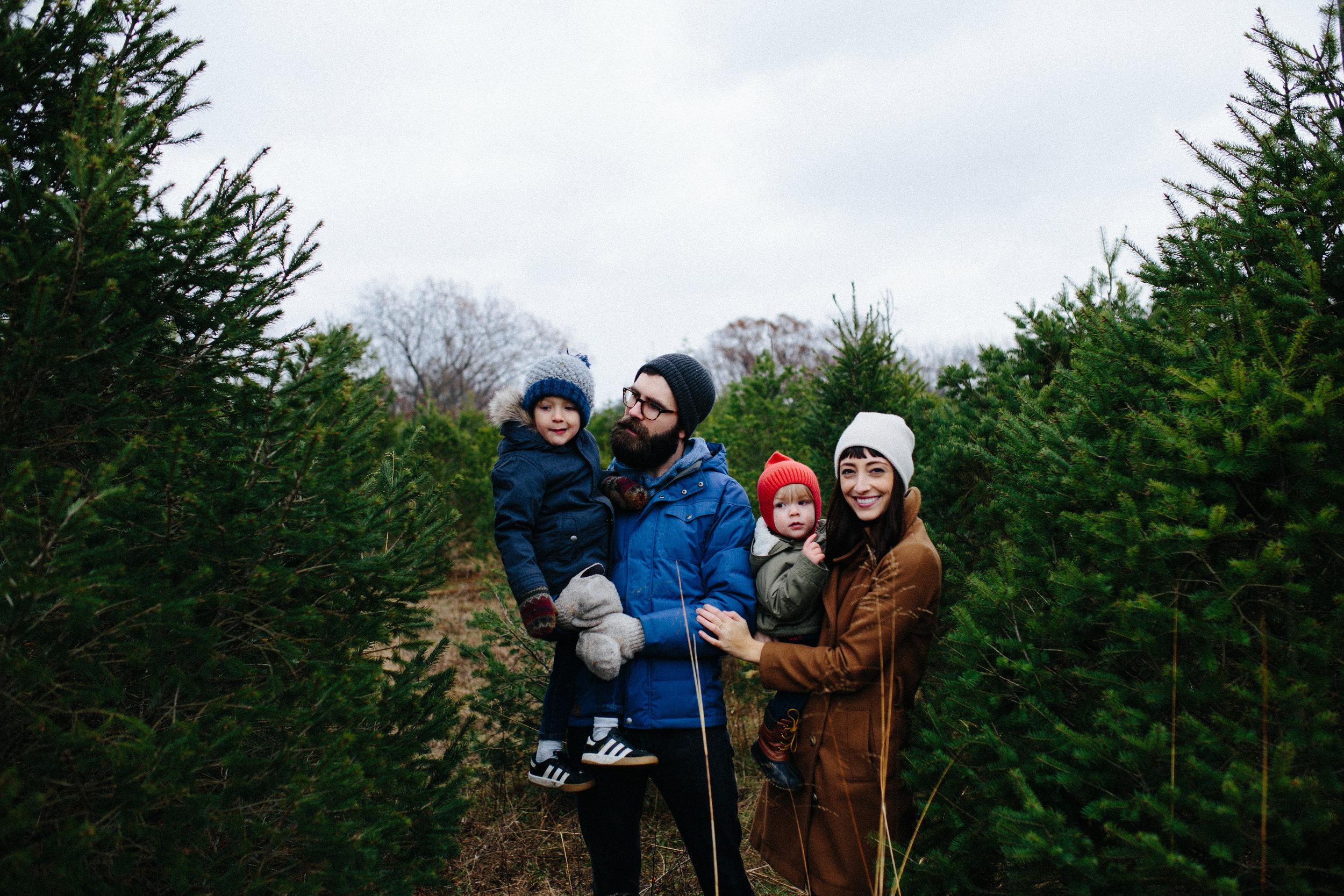 xmas tree-9.jpg