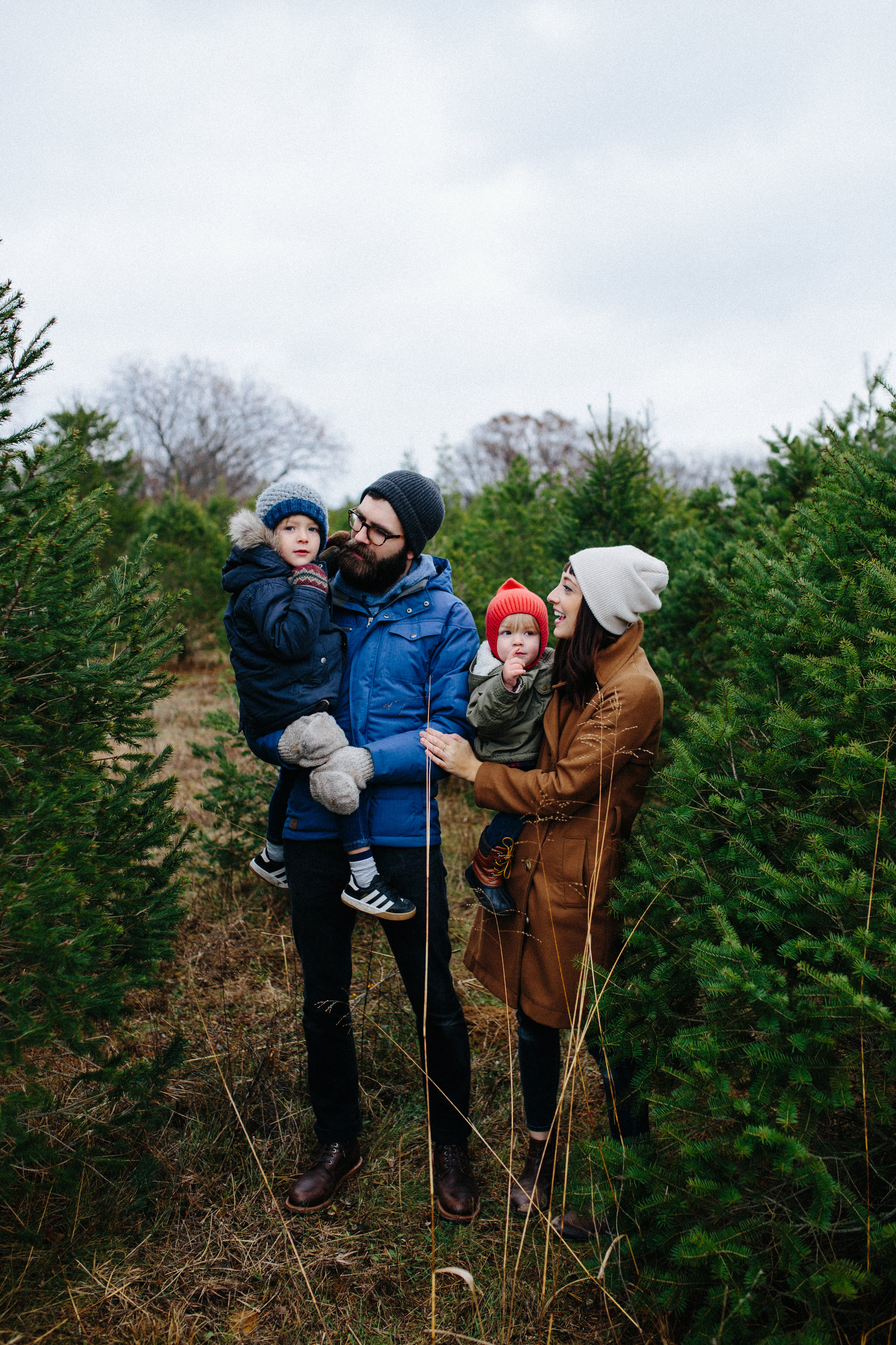 xmas tree-11.jpg
