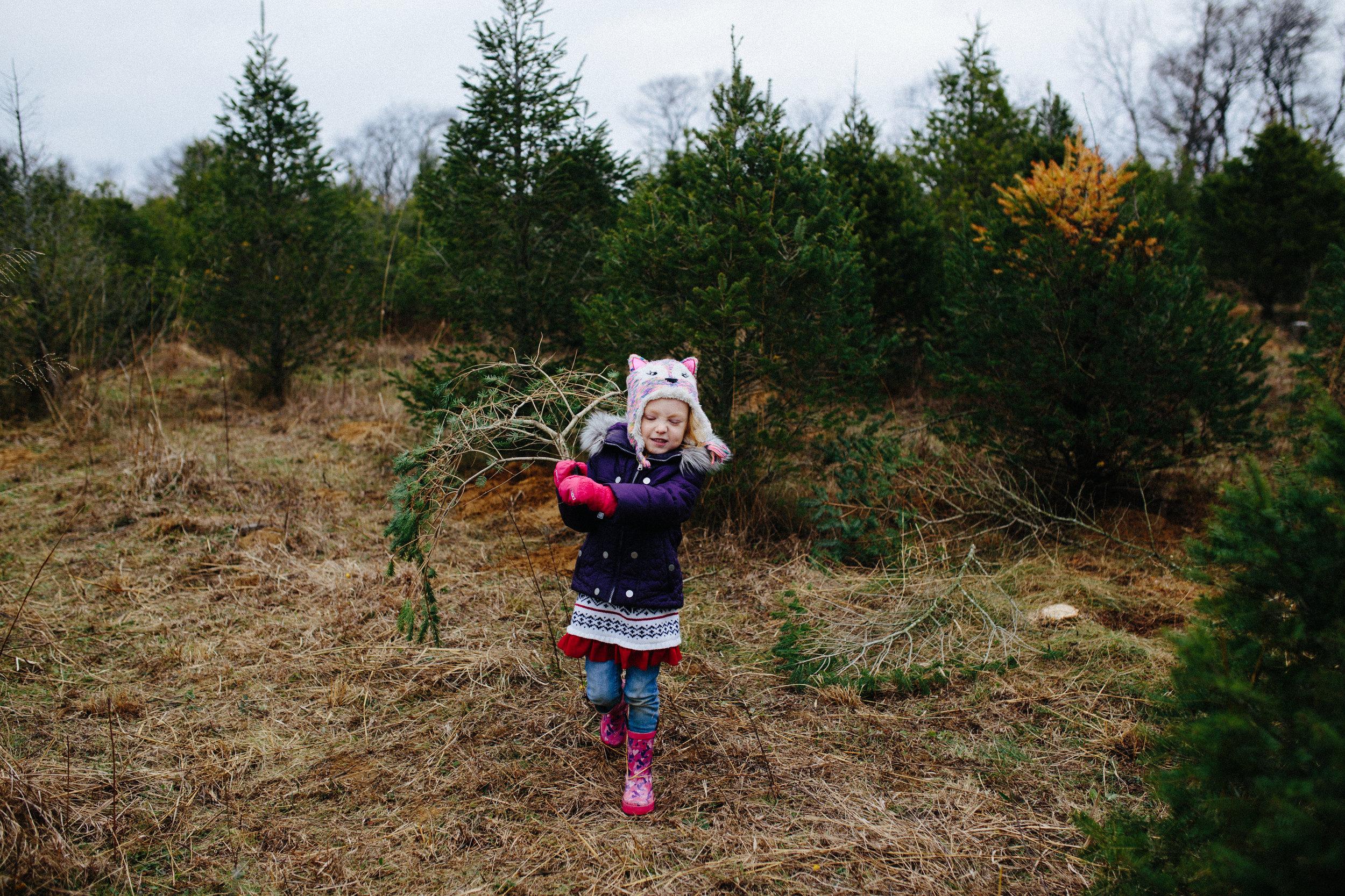 xmas tree-25.jpg
